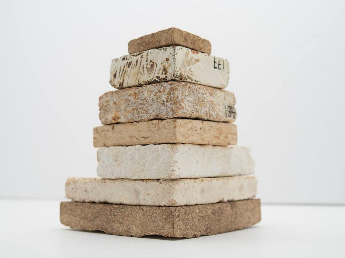 Alternative Materials: Mushroom Mycelium Technology by Mycotech Lab, Indonesia - Sheet4