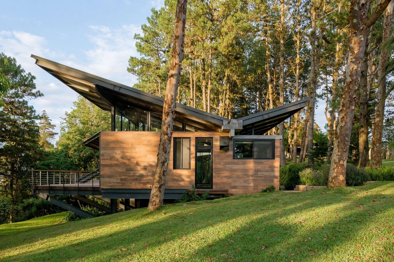 10 Examples of butterfly roofing in the Mid-Century Classic Architecture - Sheet1