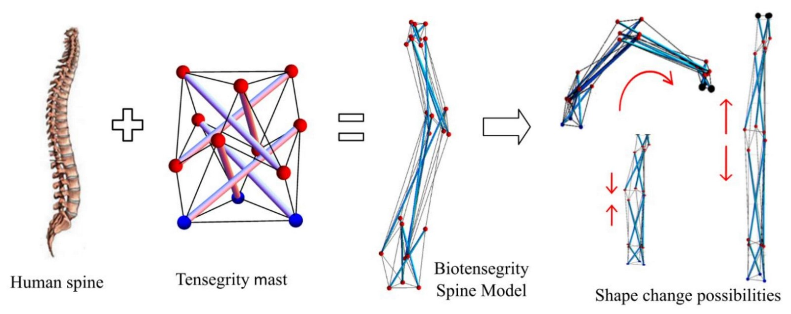 What architects must know about Tensegrity? - Sheet2
