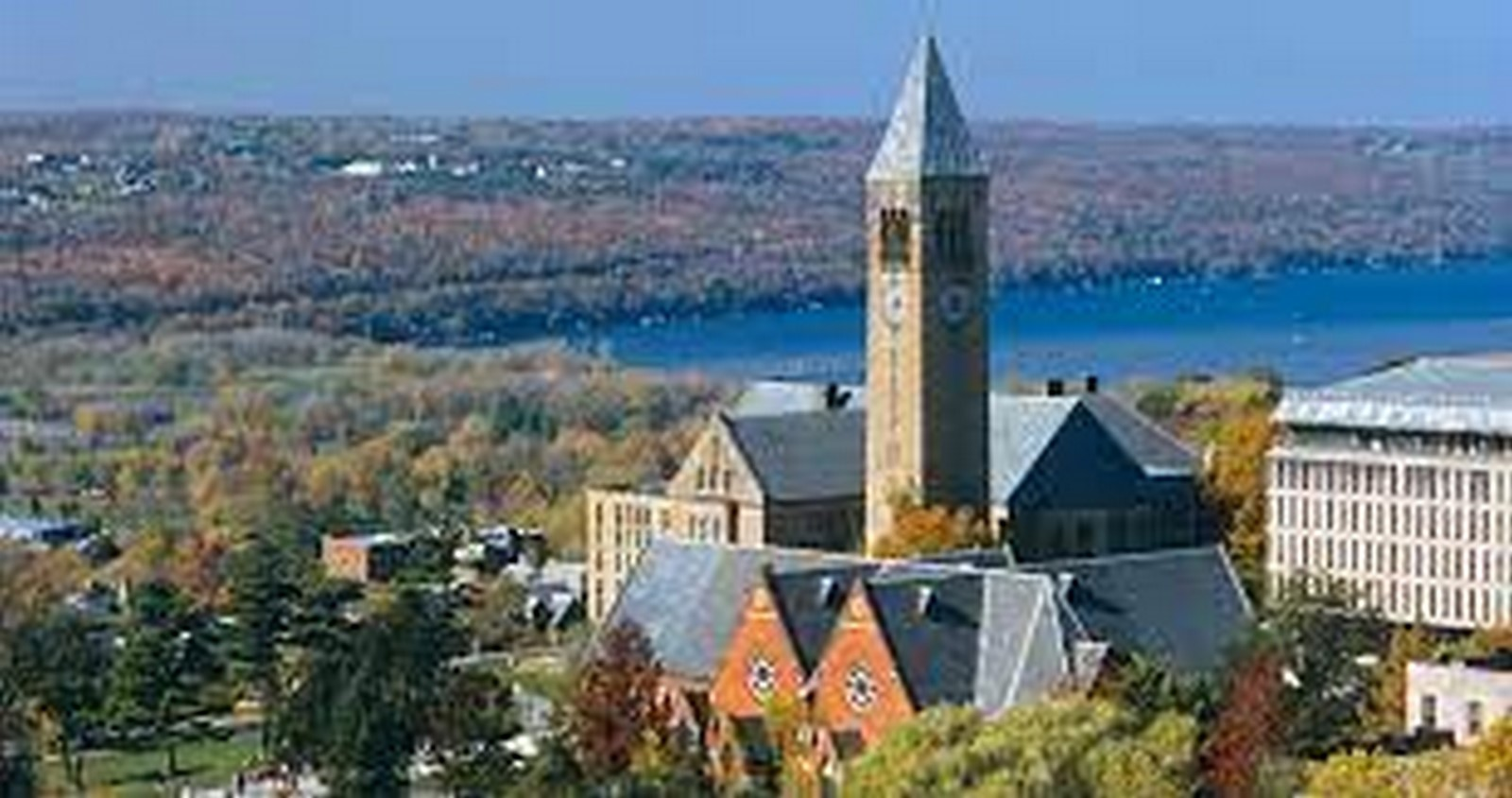 Top 10 colleges for pursuing Architecture Criticism - Sheet2