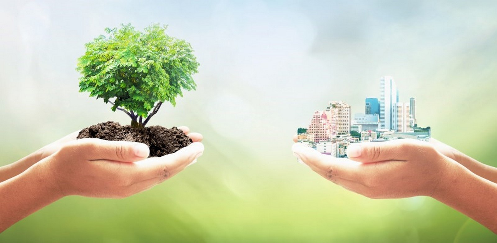 What are the Principles of Urban Sustainability - Sheet2