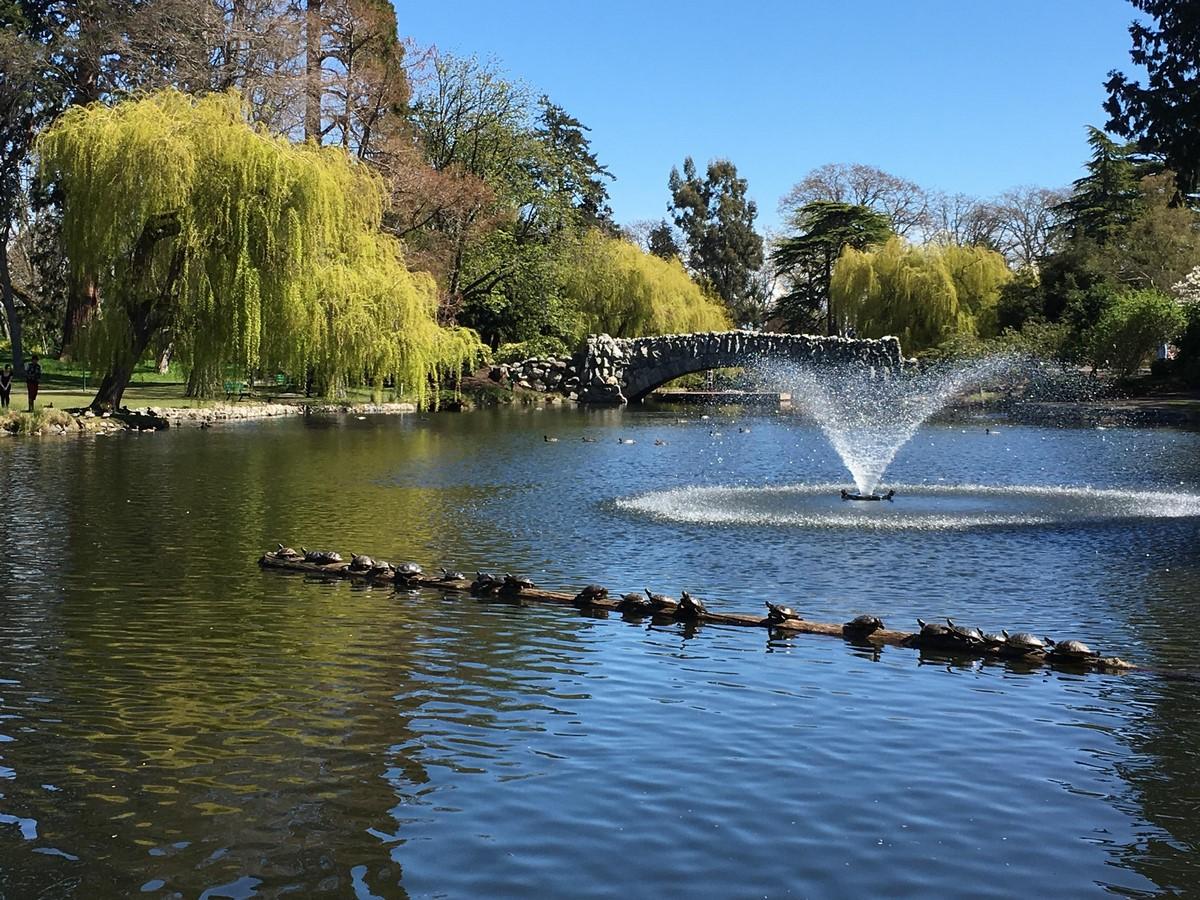 Beacon Hill Park - Sheet3