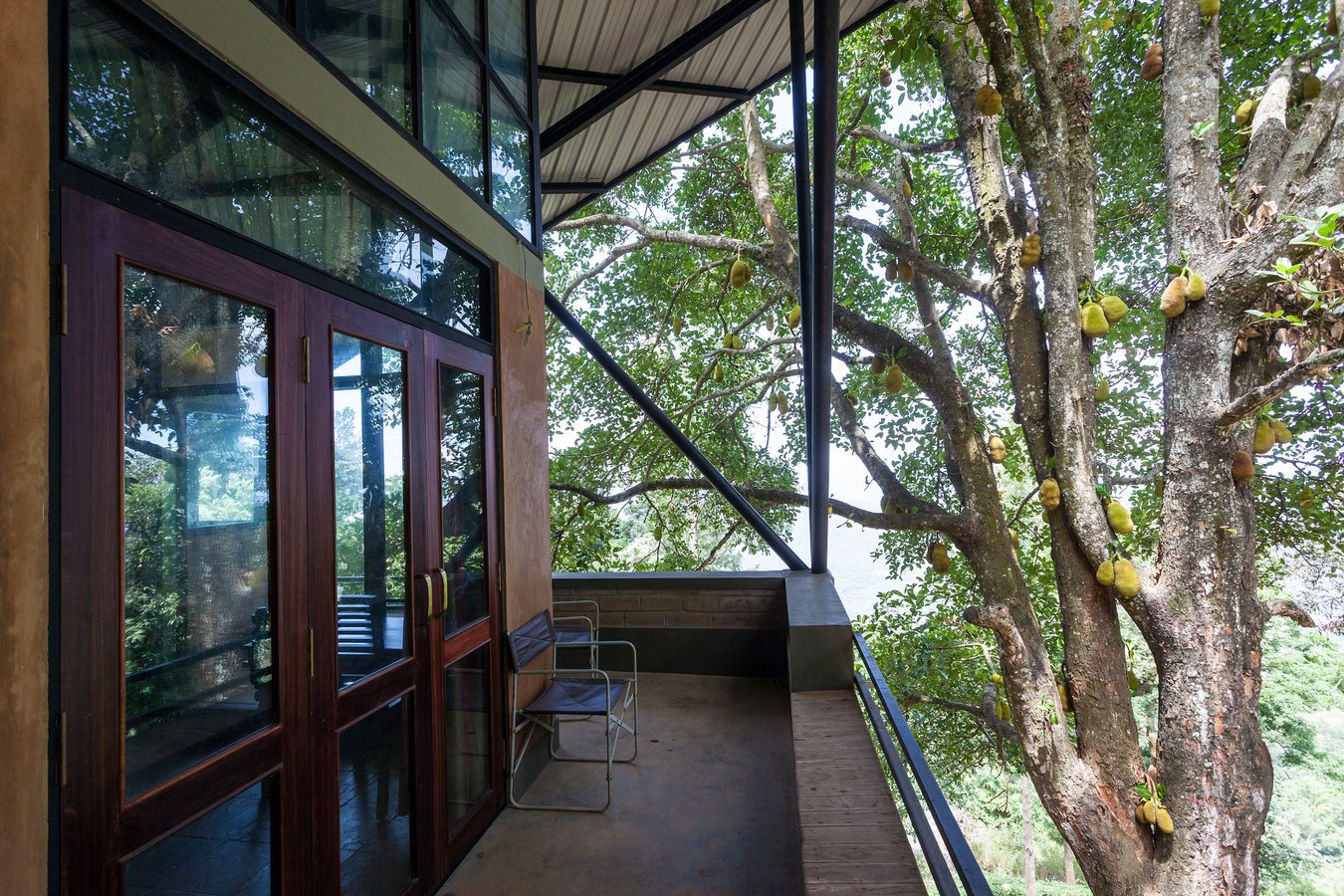 Hornbill House at Oland Estate by Chitra Vishwanath: End of the road property - Sheet3