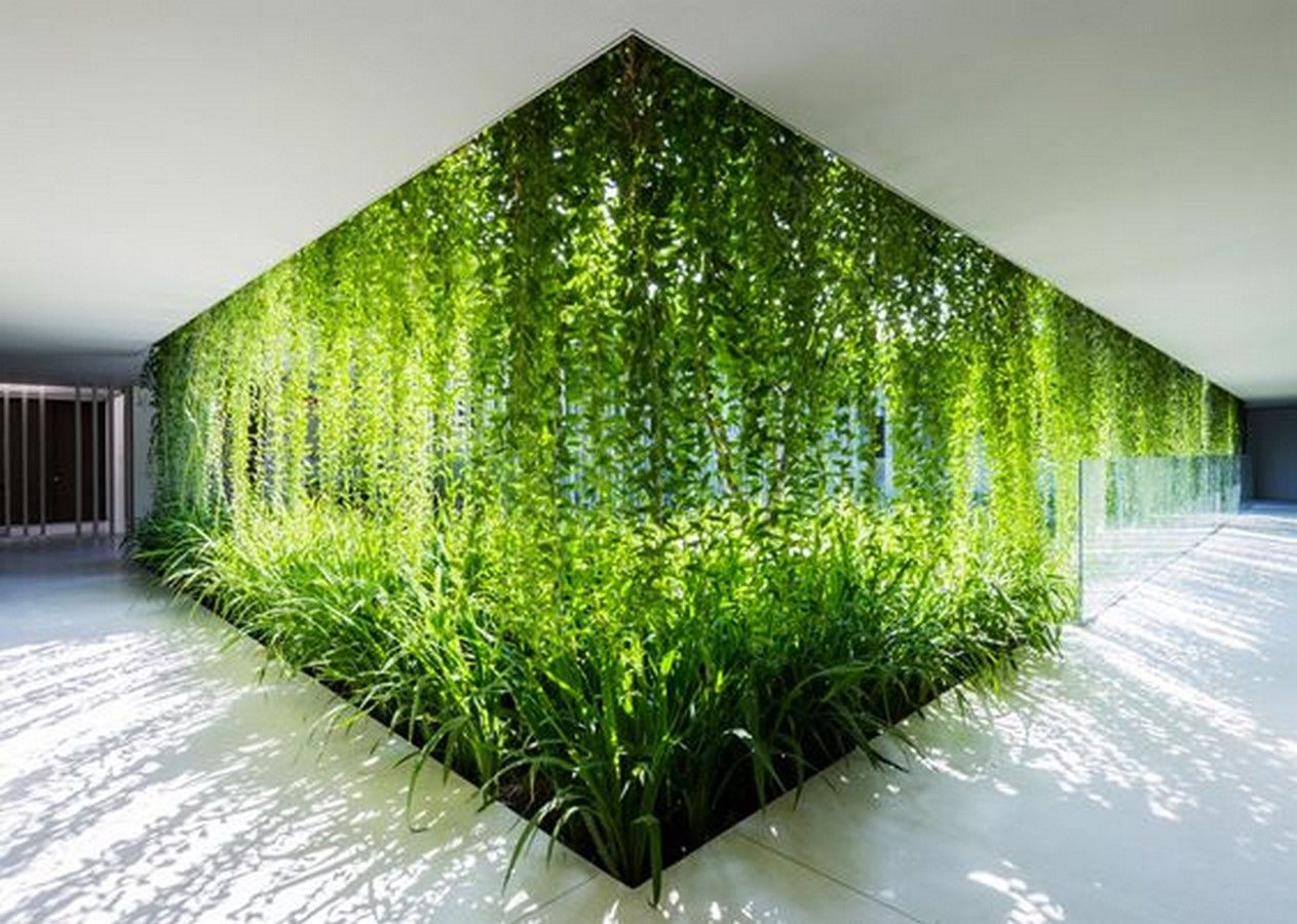 6 Things you did not know about Biophilic Design - Sheet1