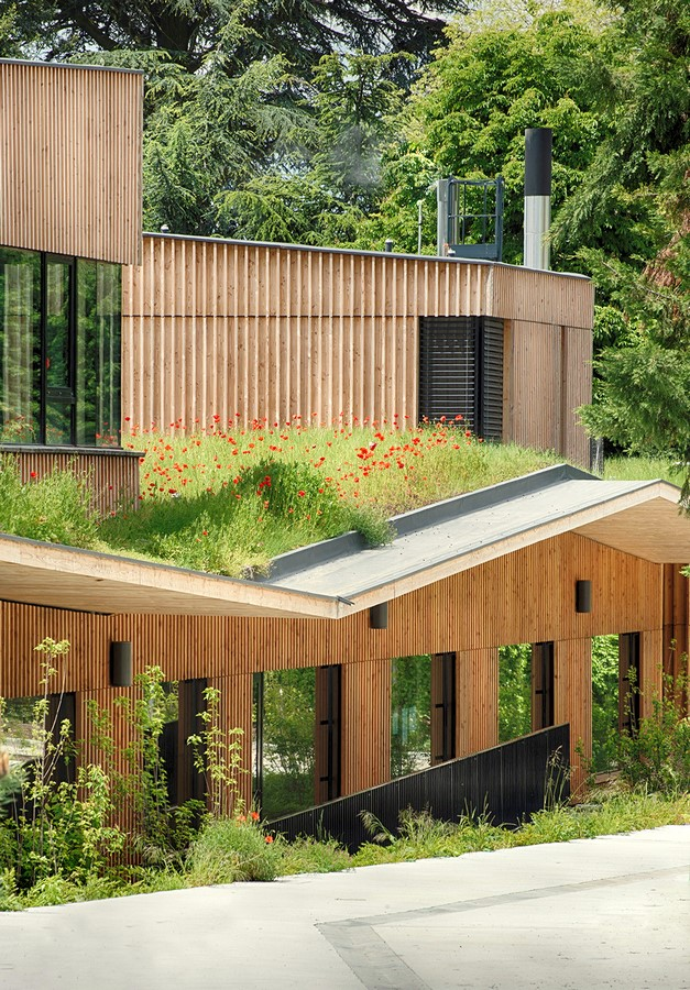 6 Things you did not know about Biophilic Design - Sheet5