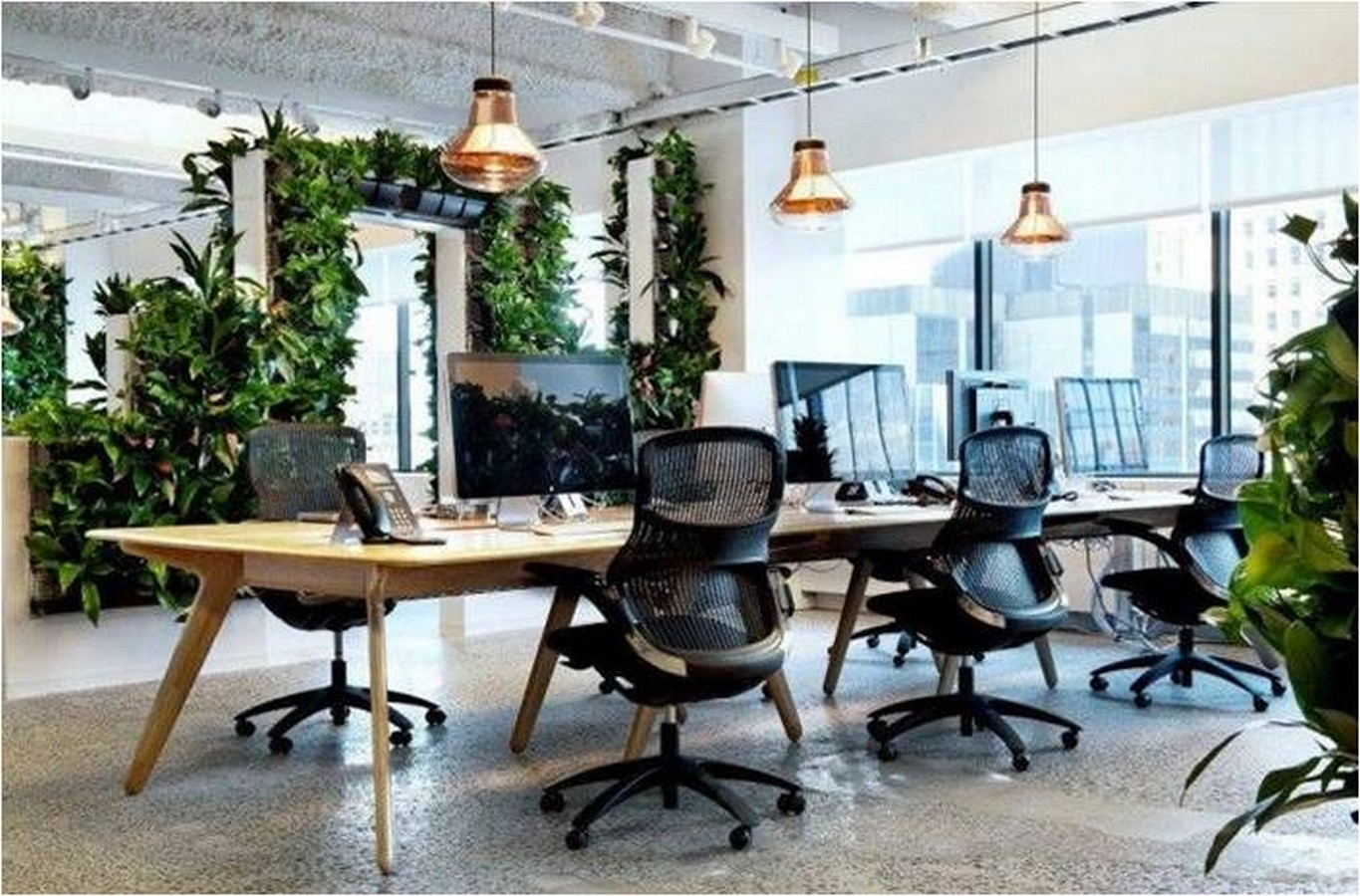 6 Things you did not know about Biophilic Design - Sheet7