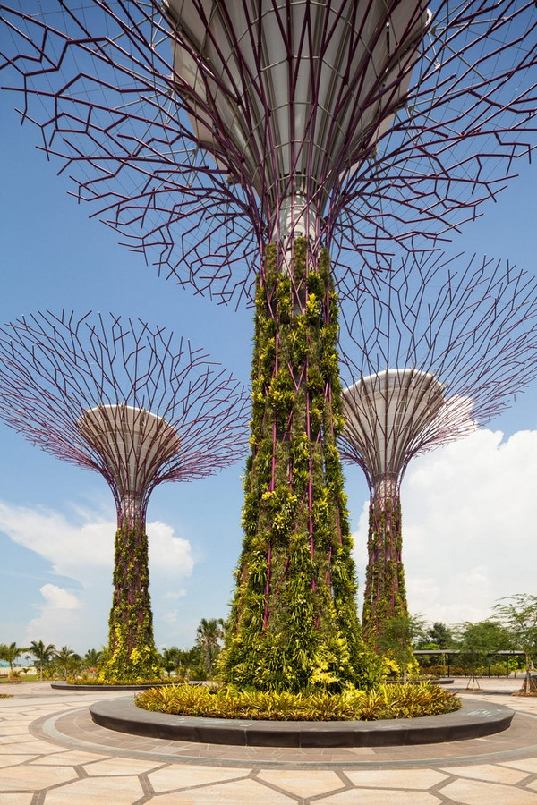 Gardens by the Bay, Singapore - Sheet3