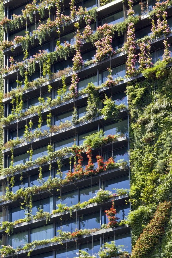 10 things you did not know about Green walls - Sheet12