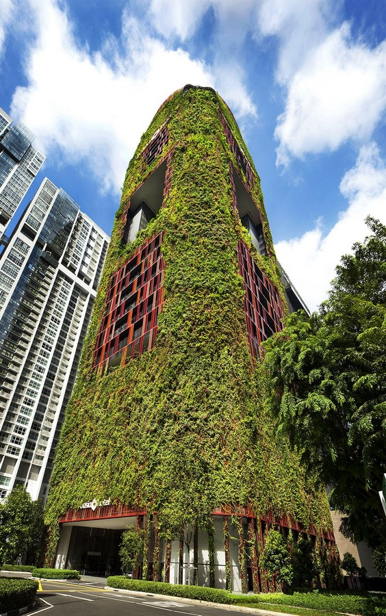 10 things you did not know about Green walls - Sheet13