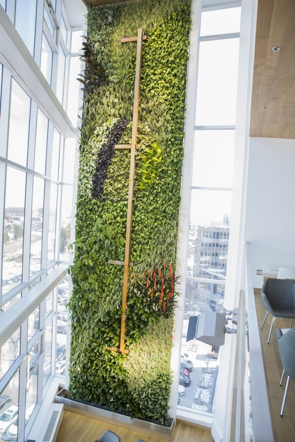 10 things you did not know about Green walls - Sheet20