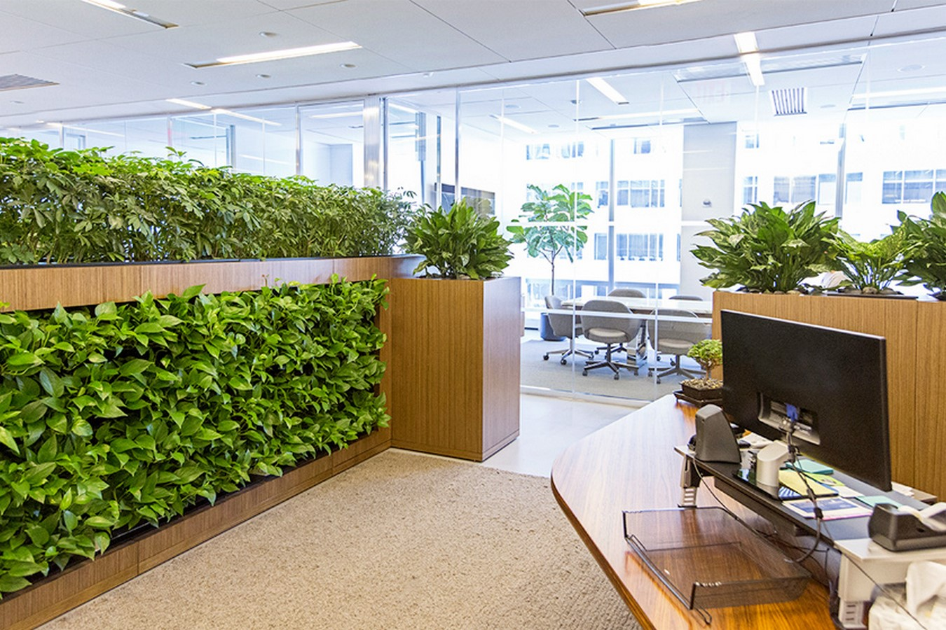 10 things you did not know about Green walls - Sheet3