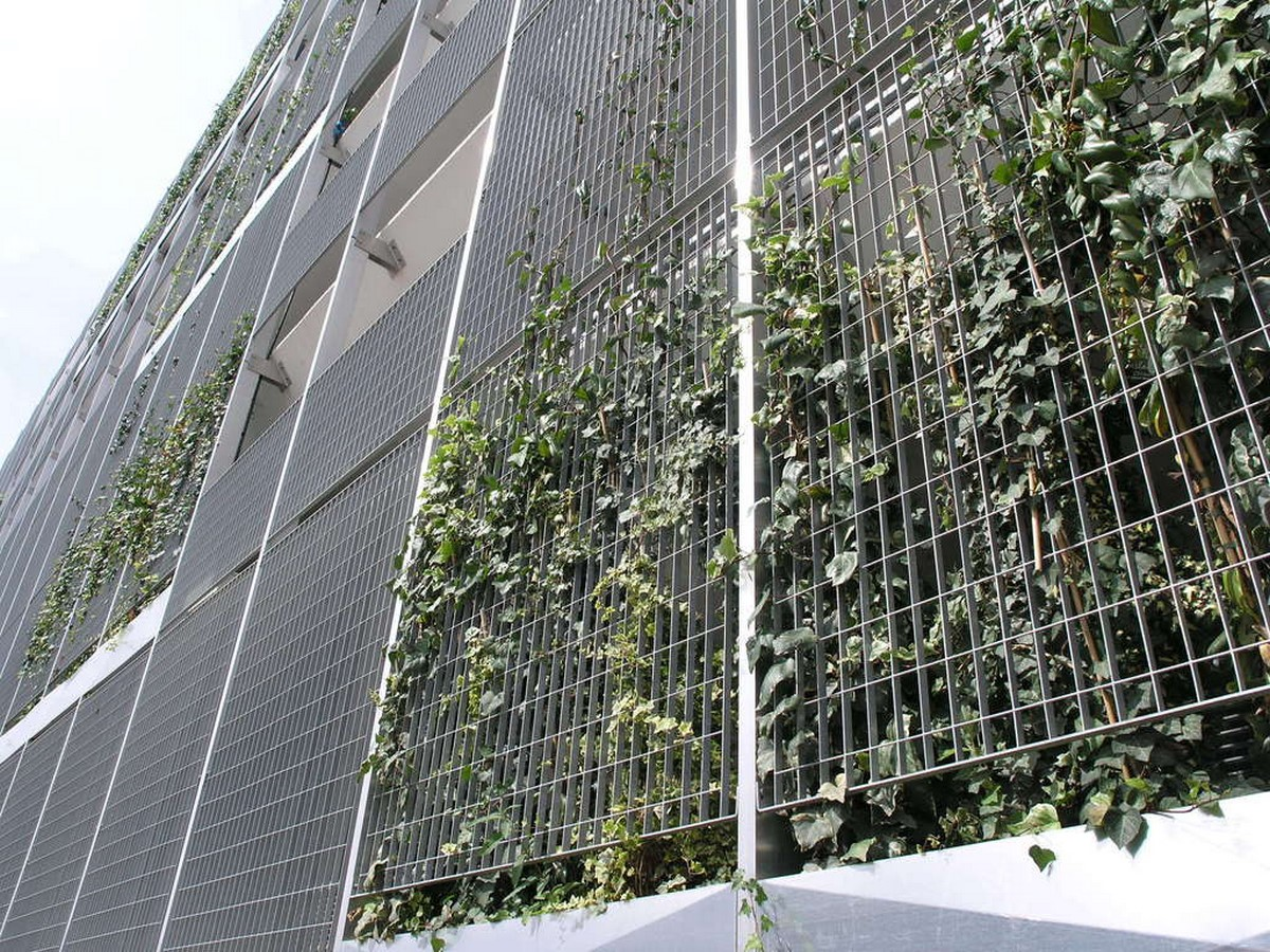 10 things you did not know about Green walls - Sheet6