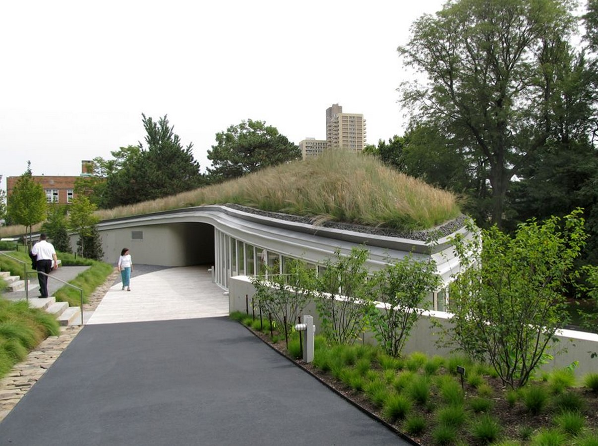 Green Roofs: An urban agricultural opportunity - Sheet6