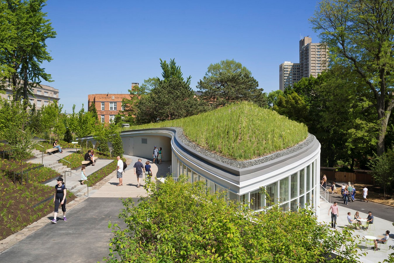 Green Roofs: An urban agricultural opportunity - Sheet7