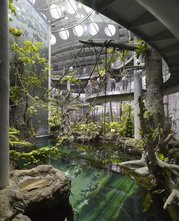 California Academy of Sciences in Golden Gate Park by Renzo Piano: The living roof architecture - Sheet9