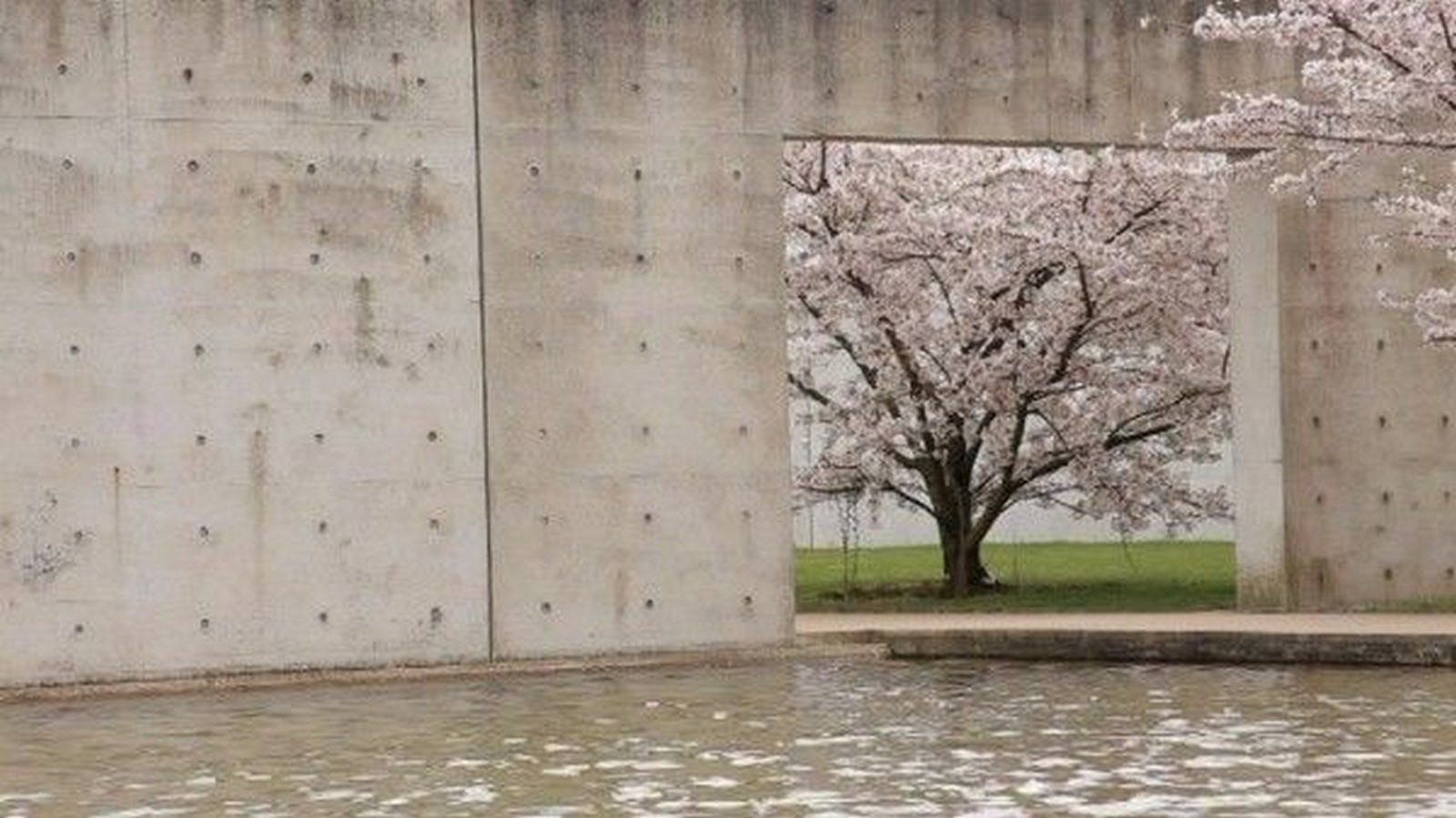 Documentary for Architects: Tadao Ando: From Emptiness to Infinity- 2013 - Sheet6