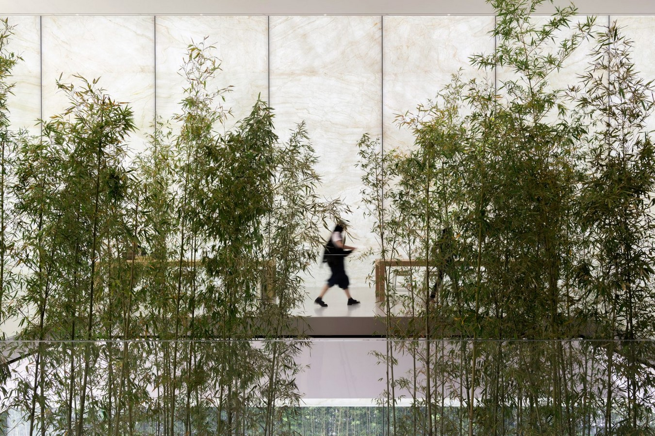 Designs that Engineer Translucency in Architecture Sheet4
