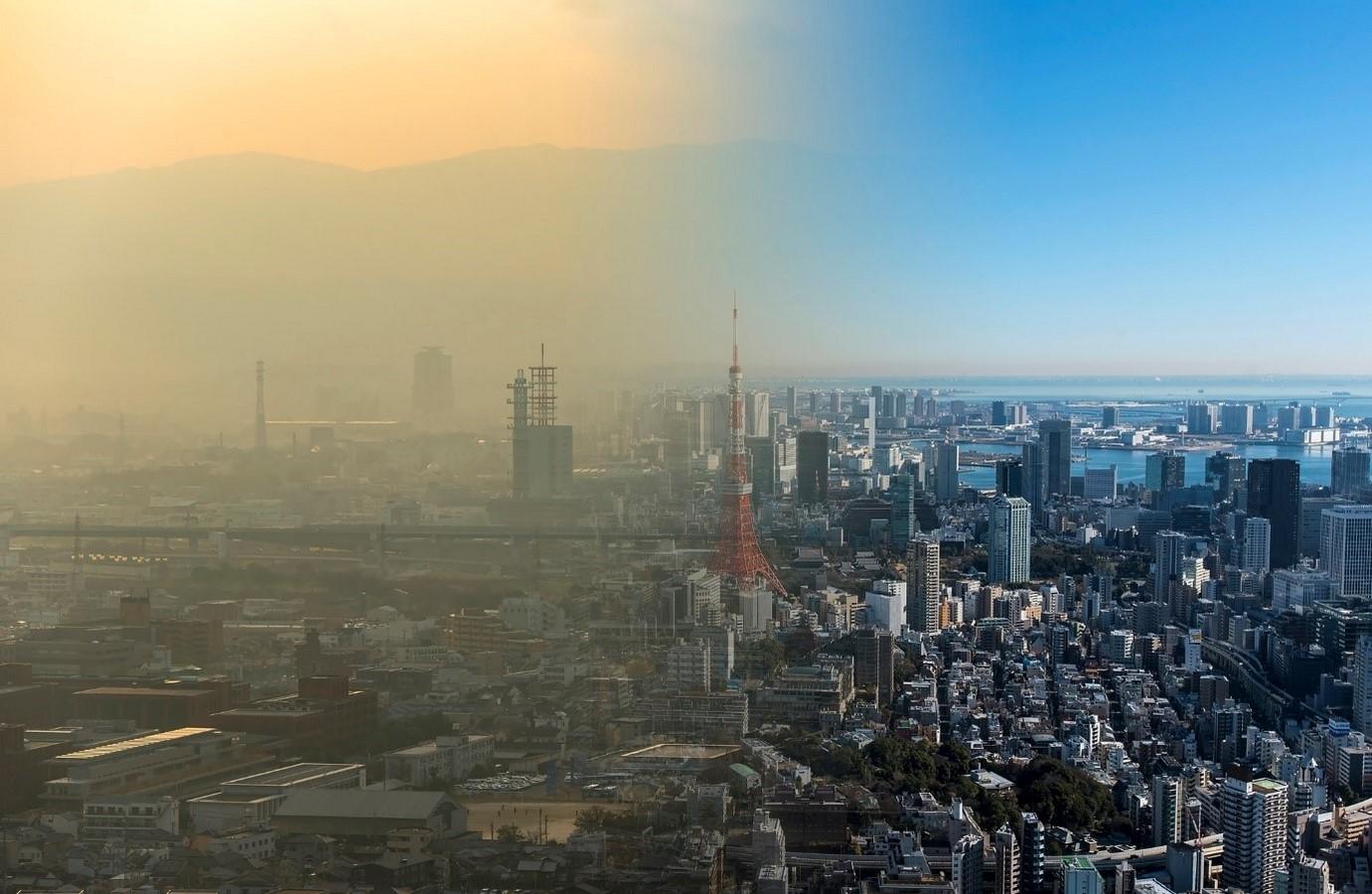 Urban pollution: Tokyo Sheet1