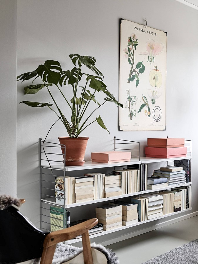 11 Plants for your workstations Sheet10