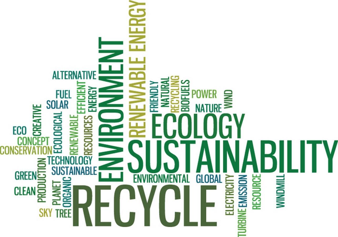 Career Guide: Sustainable Environmental Design Sheet5