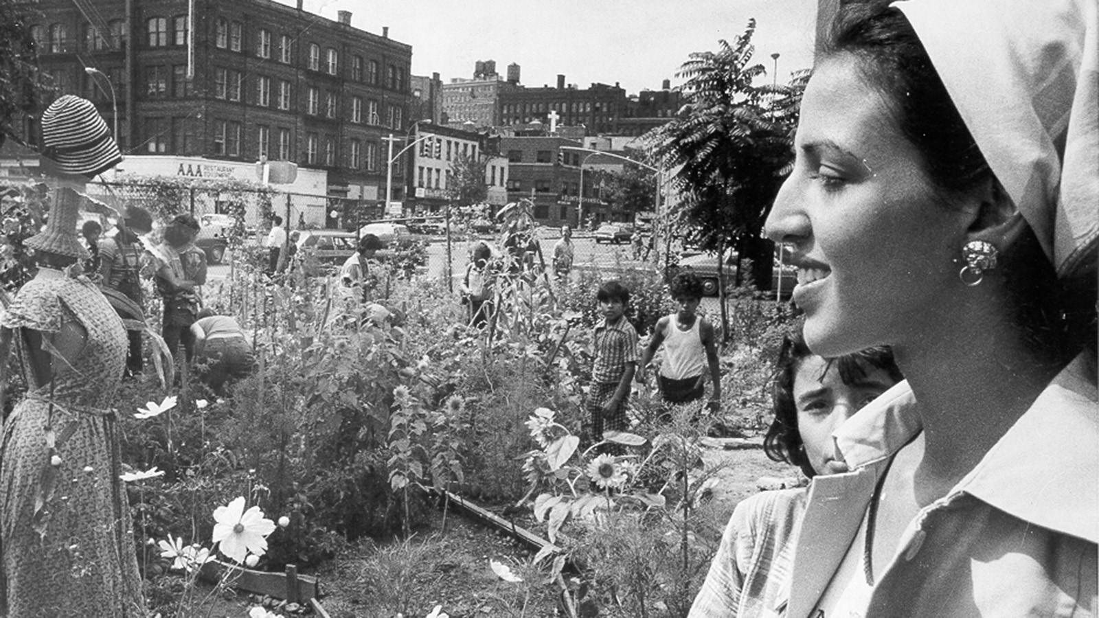 New York and the radical gardener - Sheet4