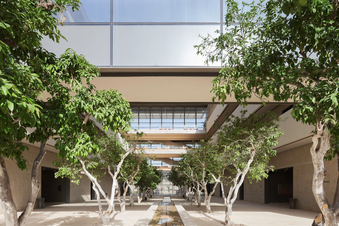 Safra Center for Brain Sciences in Jerusalem completed Foster + Partners - Sheet7